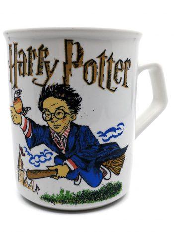 Harry Potter kop